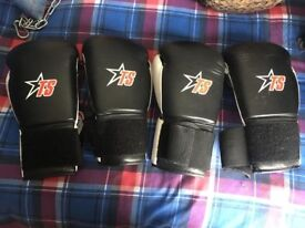 2 Pairs of 12oz T-Sport Boxing Gloves