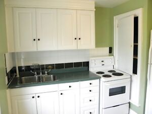 Great 3 Bdrm Apartment-Walk To Queens
