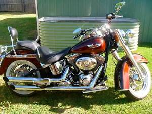2011 Australian Delivered Softail Deluxe Barwon Heads Outer Geelong Preview