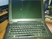 laptop dual core 1.73 1gb ram 120gb hardrive wifi hinge cover missing but perfect working