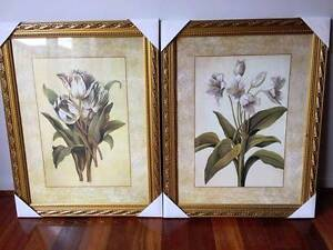 New Flower Prints in Frame Lynbrook Casey Area Preview