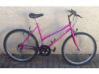 "Bike/Bicycle. LADIES APOLLO "" PULSE "" MOUNTAIN BIKE"