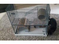 cage for rats ferrets