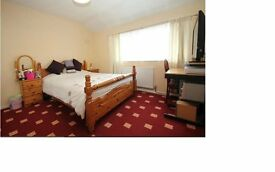 2 x Double Room Available - Must See