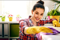 Residential House Cleaning Service