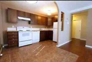 NEWLY RENOVATED ONE BEDROOM CONDO IN NORTH PARK