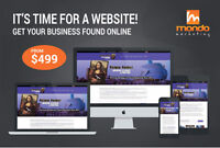 Professional Web Design starting from $499