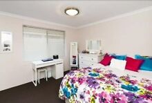 Two big bedrooms are now available! Canning Vale Canning Area Preview