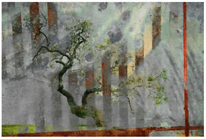 'Tranquillity' by Parvez Taj Painting Print on Wrapped Canvas