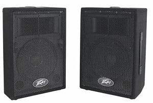 Now available at Chane Audio in Westport, the Peavey PVi10