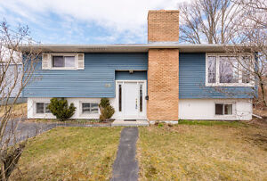 Bright, Spacious, Heart of Woodlawn - 45 Woodlawn Road