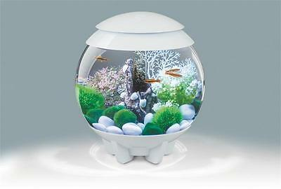 BiOrb 15L Halo Aquarium with Multi Color Remote Lighting - White