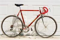 Colnago Oval CX team bike