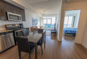 LUXURY CLEAN PENTHOUSE AT YONGE AND STEELES 1+1