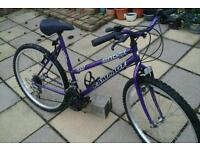 Suit teenage to adults 17inch frame 26inch wheels 15gears good working order purple colour