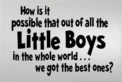 HOW IS IT POSSIBLE LITTLE BOYS WE GOT THE BEST ONES VINYL DECAL KIDS ROOM (Best Decal Kids)
