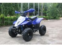 BRAND NEW 110CC THUNDER CAT QUAD BIKE BLUE GREEN PINK RED BLACK £440 WITH REVERSE GEAR
