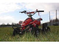 new kids 50cc Street Assassin Mini Off-Road Petrol Quad Bike Blue yellow black red green pink