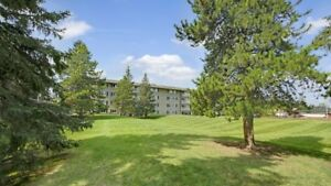 Large 1 BDRM!Easy access to the tranit!Walk to WEM!