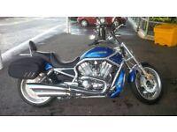 Harley Daividson VSCRAW V-Rod