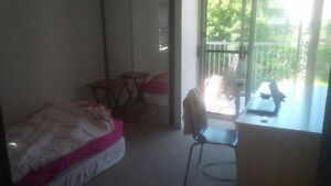 Spring hill single room Woolloongabba Brisbane South West Preview