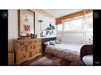 Large lovely room in happy house in Chalk Farm/ Belsize Park