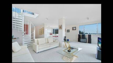 Double-Room to rent in stunning North Bondi Penthouse