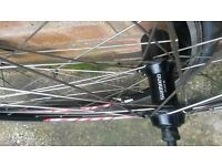 Road wheels wheelset Shimano hubs Omega Mach 1 rims, NEW + quick releases + tubes + tyres