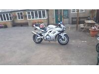 Suzuki SV1000S - Good condition, V-Twin, 19k Miles, Lots of extras