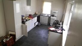 Newly refurbished large 3 bedroom house ready to rent in July