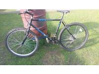 gents Peugeot mountain bike fully serviced new tubes and tyres fitted today good to go £40