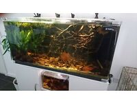 4ft Ocean Free Curved Braceless Fish Tank with accessories - just add fish!