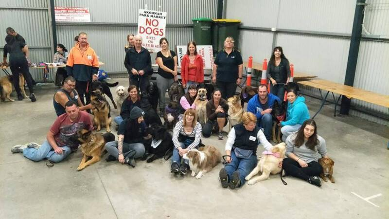 DOG TRAINING GROUP CLASSES