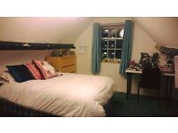 Short term- Double Room in Bristol