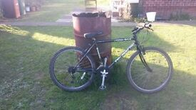 gents townsend mountain bike reduced ready to use £25 collect only
