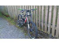 Downhill/Freeride bike