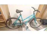 Ladies Bluke Bike