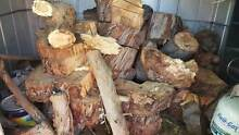 Free Firewood: ONLY this weekend will open to pick up.Last chance Rydalmere Parramatta Area Preview
