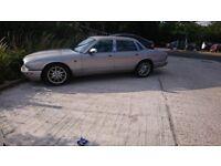 Jaguar for sale!