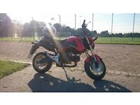 Honda MSx 125cc 15Plate