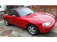 Mazda mx5 ****(12 months mot ) ****