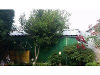 Garage shed for sale