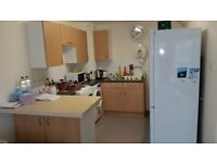Large 1 bed council flat + £2000 look for swap with 2-3 beds in London