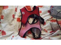 2 dog harnesses for sale