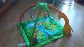 Baby Gym - Fisher Price used but in a good condition