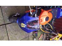 50cc mini Moto gp