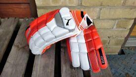 LH Puma Evo 2 Batting Gloves