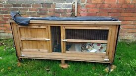 Chartwell 5ft GP cage 1yo for sale, collection only £40