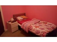 Single Pinky bedroom to rent.