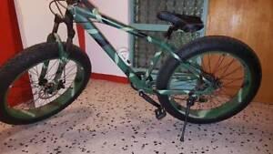 Beast fat metal bush bashing/mountain and road bike